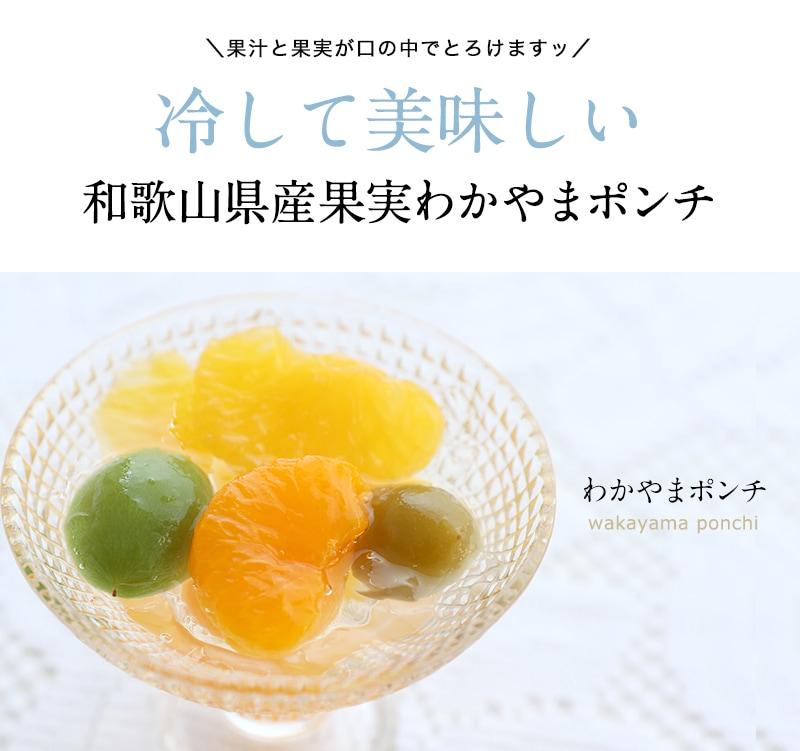 冷やしておいしい和歌山県産わかやまポンチ