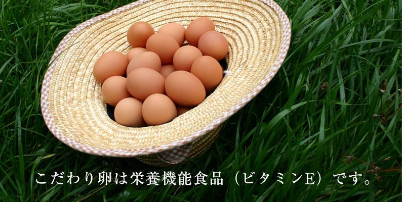こだわり卵は栄養機能食品(ビタミンE)です。
