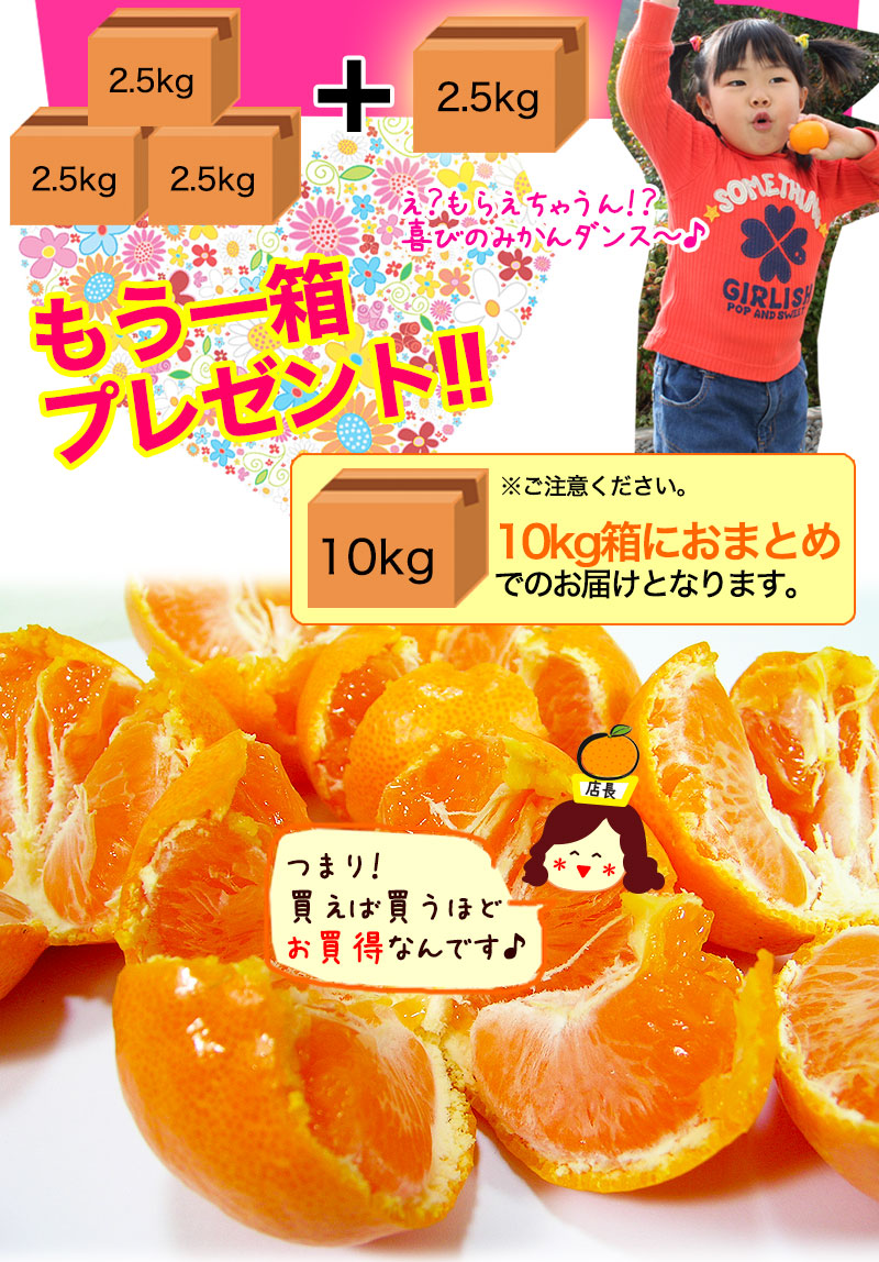 有田みかんが3箱ご購入でプラス一箱プレゼント!