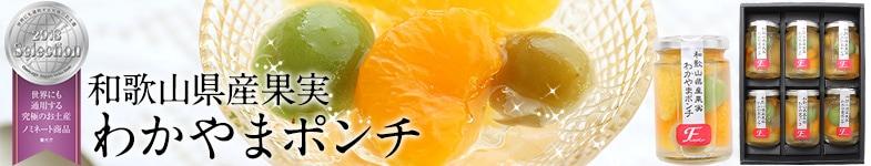 和歌山県産果実使用のわかやまポンチセット 夏ギフトに人気です