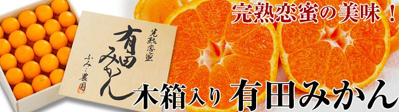 和歌山のたねなし柿