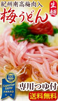 紀州梅うどん、さっぱりしこしこ美味しい夏麺