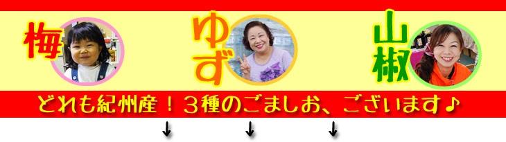 どれも和歌山県産!おいしい3種のごま塩です。