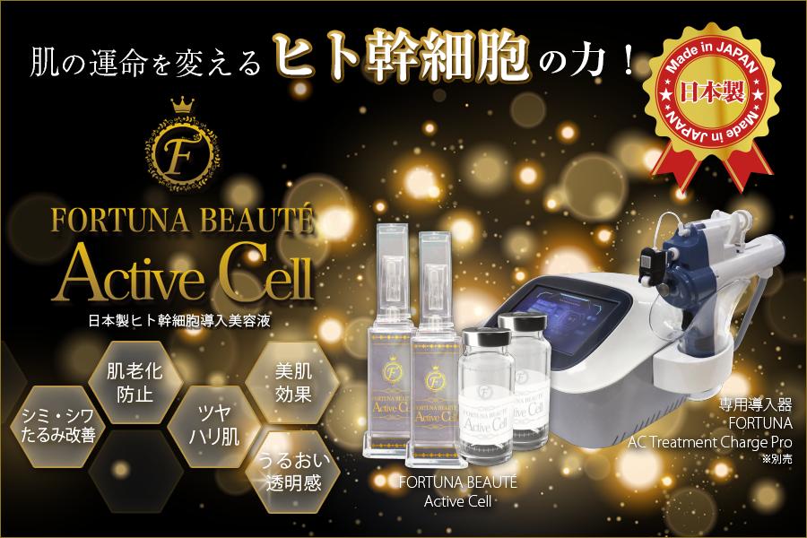 ヒト幹細胞導入