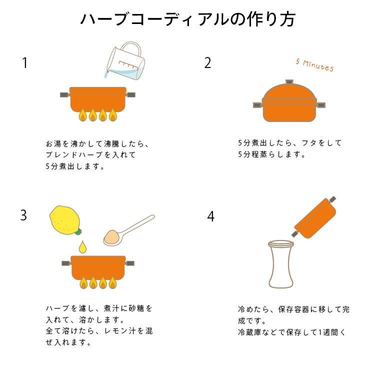 ハーブコーディアル手作りキット