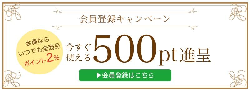会員登録で今すぐ使える500ポイントプレゼント