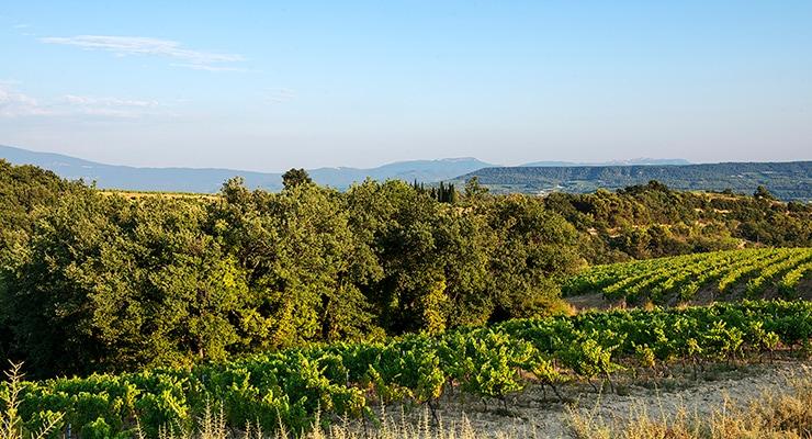 ヴィザン村の風景
