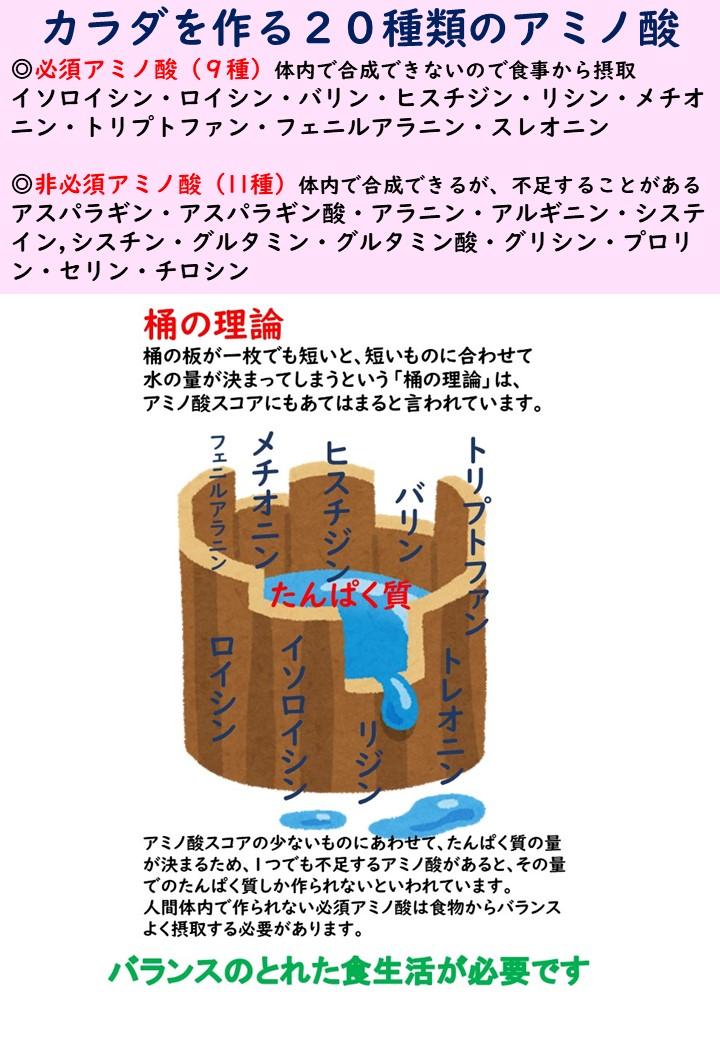 amino2説明