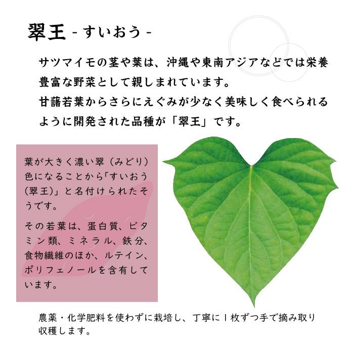 aojiru5説明