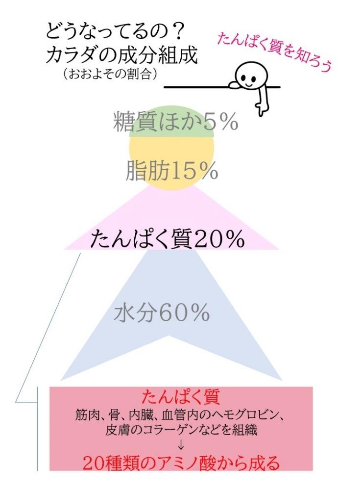 daizu1説明