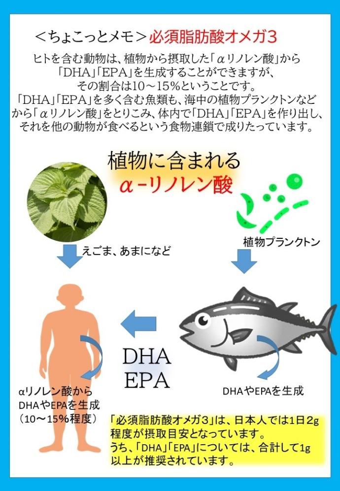 dha6説明
