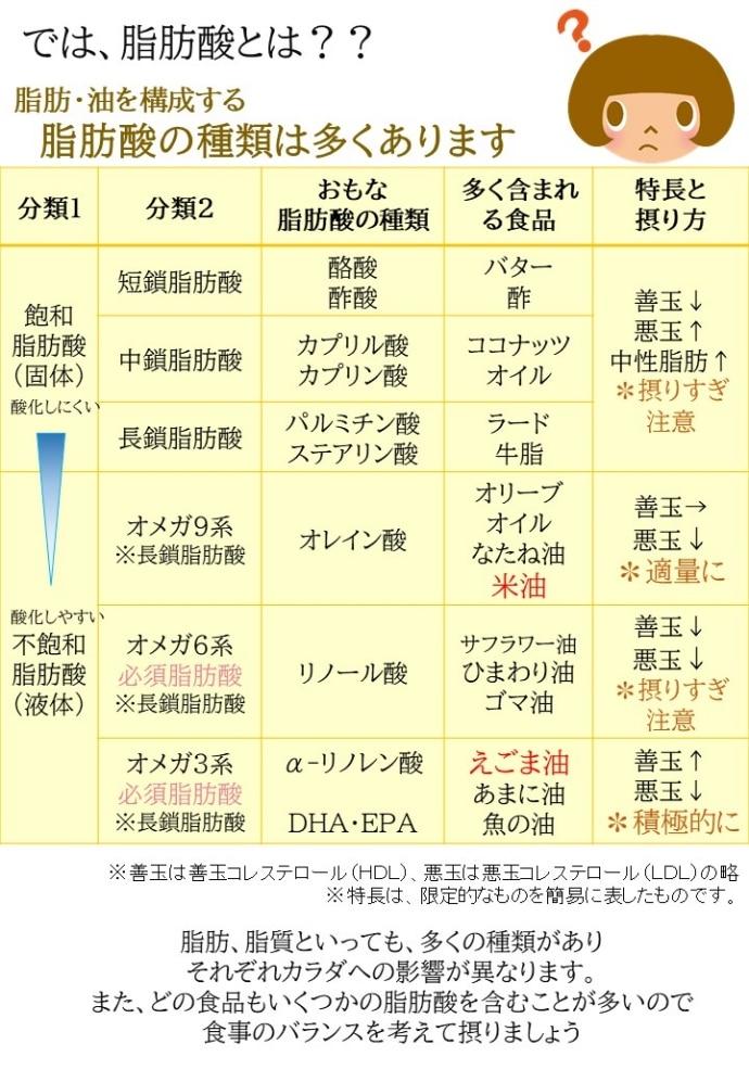 egoma5説明