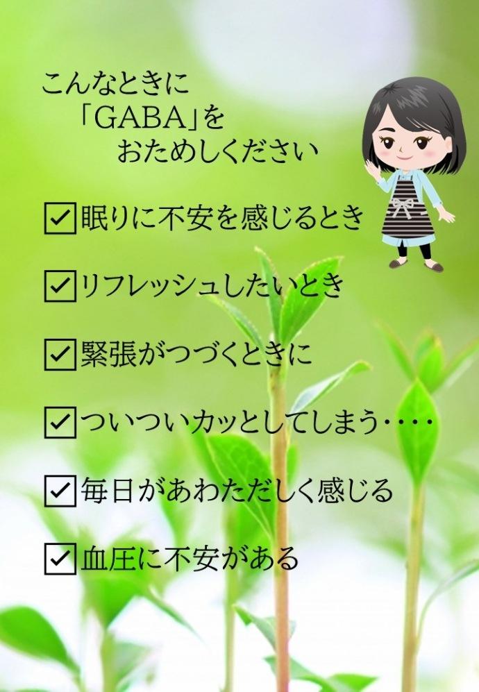 gaba5説明