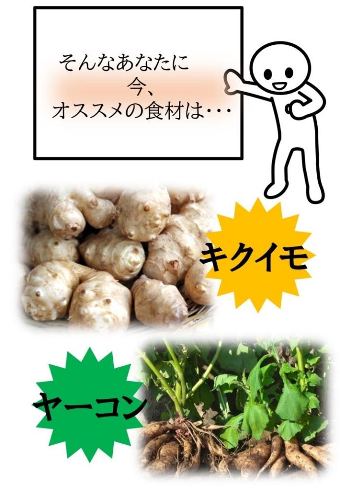 kikuimo2説明