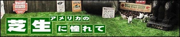 アメリカの芝生に憧れて 〜リアルな人工芝の施工例〜