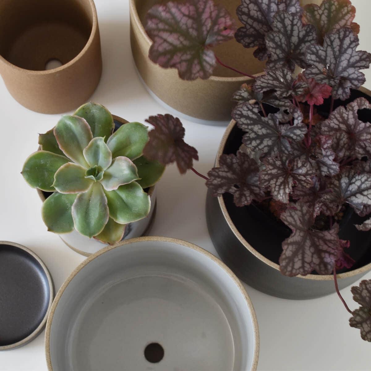 hasami porcelain planter