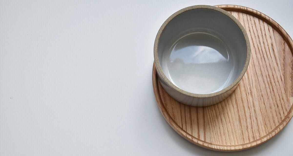 hasami porcelain tray