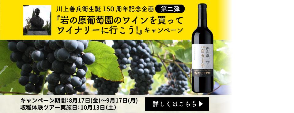 岩の原葡萄園のワインを買ってワイナリーに行こう!