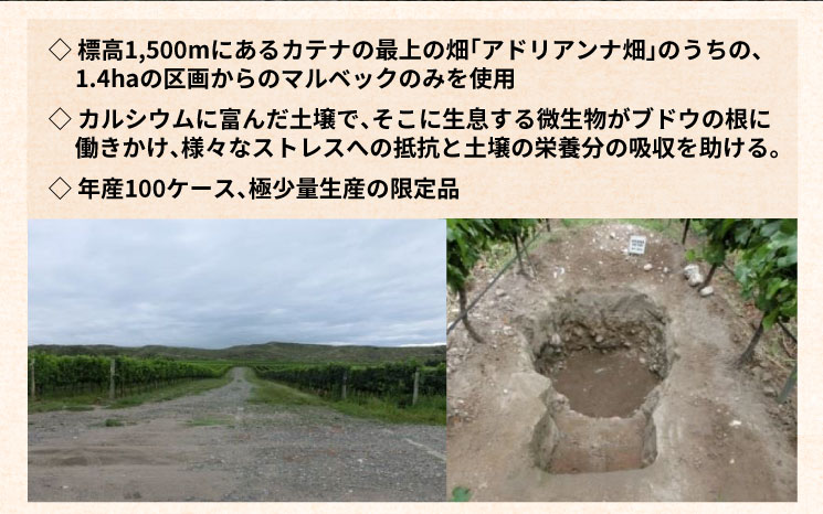 ◇ 標高1,500mにあるカテナの最上の畑「アドリアンナ畑」のうちの、1.4haの区画からのマルベックのみを使用◇ カルシウムに富んだ土壌で、そこに生息する微生物がブドウの根に働きかけ、様々なストレスへの抵抗と土壌の栄養分の吸収を助ける。◇ 年産100ケース、極少量生産の限定品