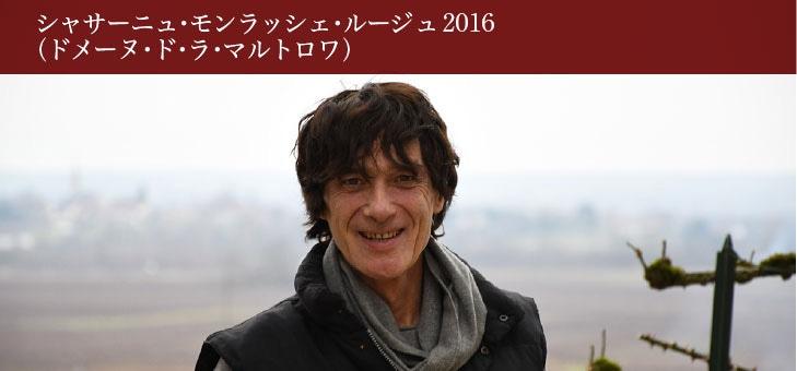 シャサーニュ・モンラッシェ・ルージュ 2016