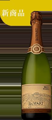 2016 リョパール