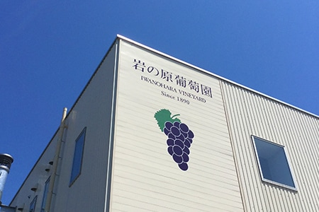 IWANOHARA VINEYARD 岩の原葡萄園