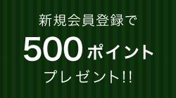 新規会員登録で500ポイントプレゼント!!