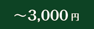 〜 3,000円