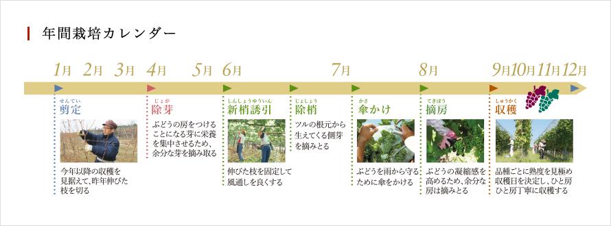 年間栽培カレンダー