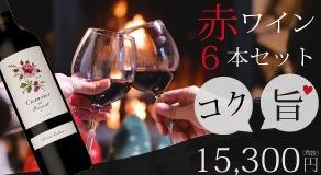 冬のおすすめ!コク旨赤ワイン 6本セット