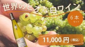 世界のビオな白ワイン6本セット