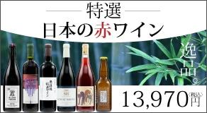 カーヴドリラックス特選!日本の赤ワイン5本セット+1