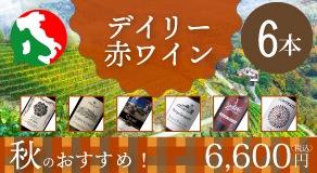 【イタリア周遊】秋のおすすめ!デイリー赤ワイン6本セット