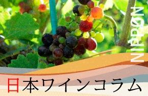日本ワインコラム