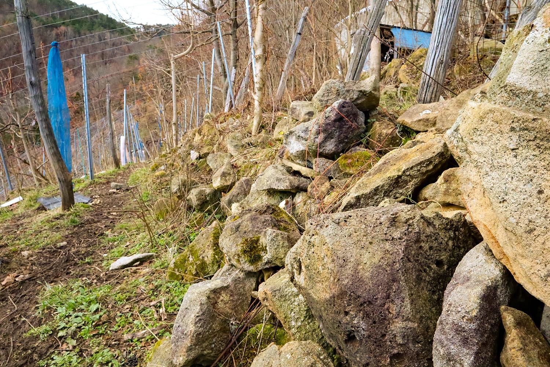 急斜面には所々に石垣が設けられる。少々崩れ気味なのは、これまた羊の仕業である。