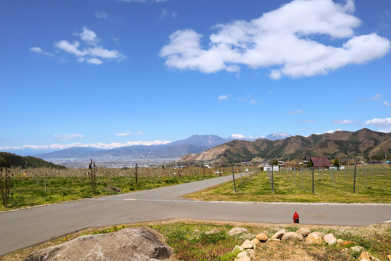 信州たかやまワイナリーは、高山村の中でも比較的標高の高い傾斜地に位置している。