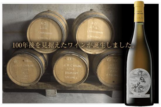 100年後を見据えたワインが誕生しました。