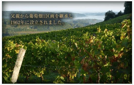 父親から葡萄畑1区画を継承し1962年に設立されました。