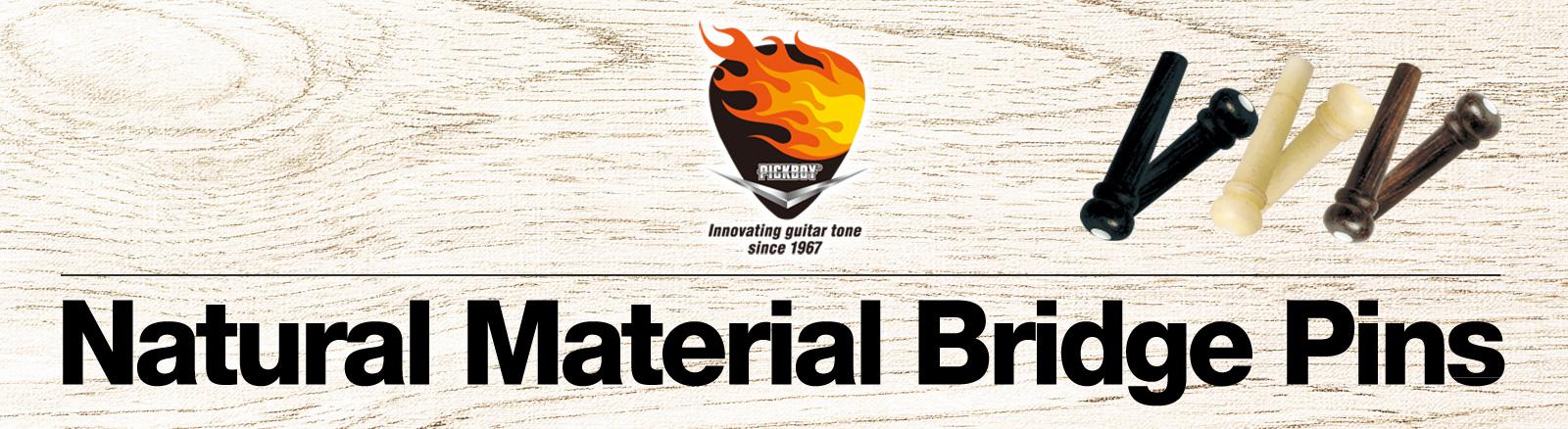 Natural Materials Brige Pinタイトル