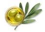 オーガニックオリーブオイル (オリーブ果実油)