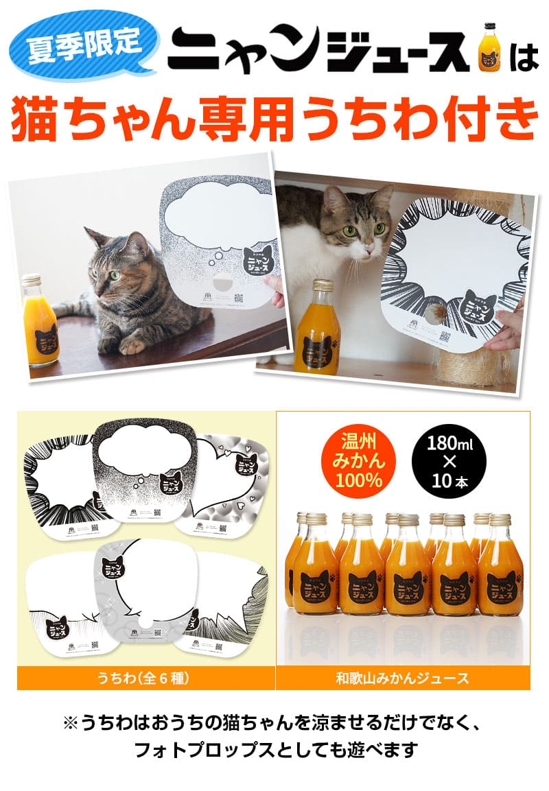 猫ちゃん専⽤うちわ付き
