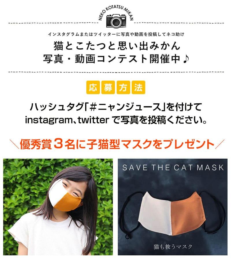 \優秀賞3名に⼦猫型マスクをプレゼント /