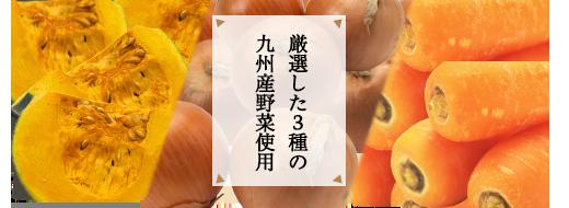 厳選した3種類の九州産野菜使用
