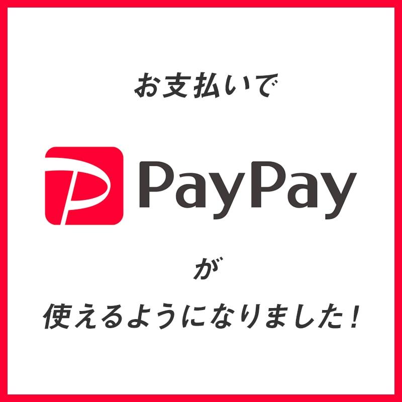 お支払いでPayPayが使えるようになりました!