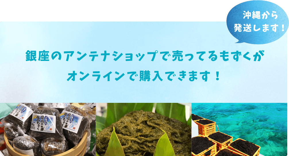 沖縄から発送します!銀座のアンテナショップで売ってるもずくがオンラインで購入できます!
