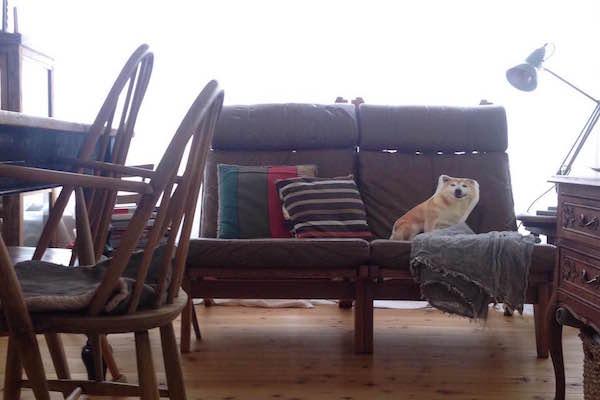 北欧ビンテージ家具 GE375 Highjack Chair
