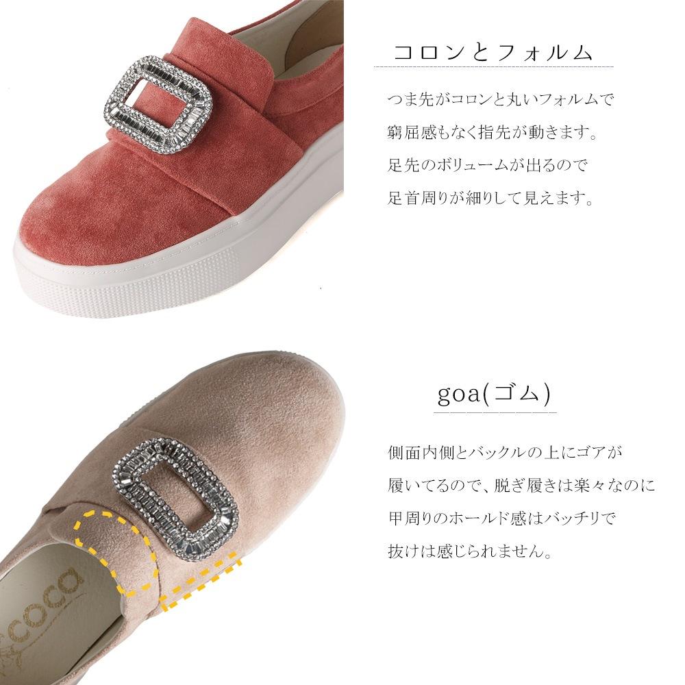 コロンとフォルム/ゴア