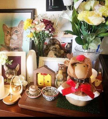 愛猫と位牌の写真