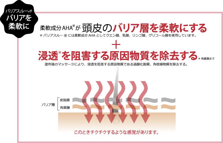 柔軟成分AHAが頭皮のバリア層を柔軟にする