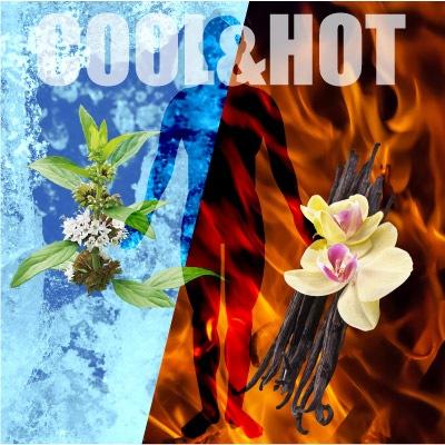 cool&hotサイクロン